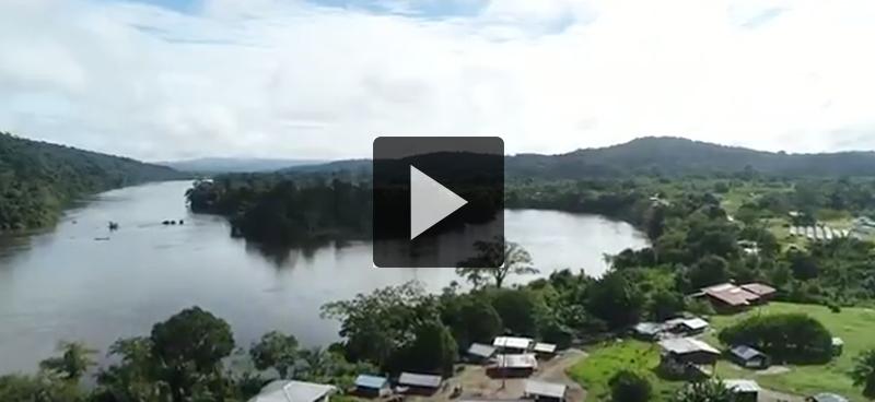 Guyane : L'énergie verte du poumon guyanais – Positive Outre-Mer