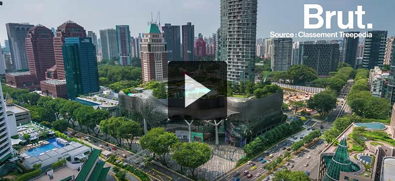 Singapour choisit l'écologie comme grand axe de développement