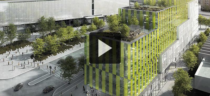 Des murs en micro-algues pour dépolluer les villes demain