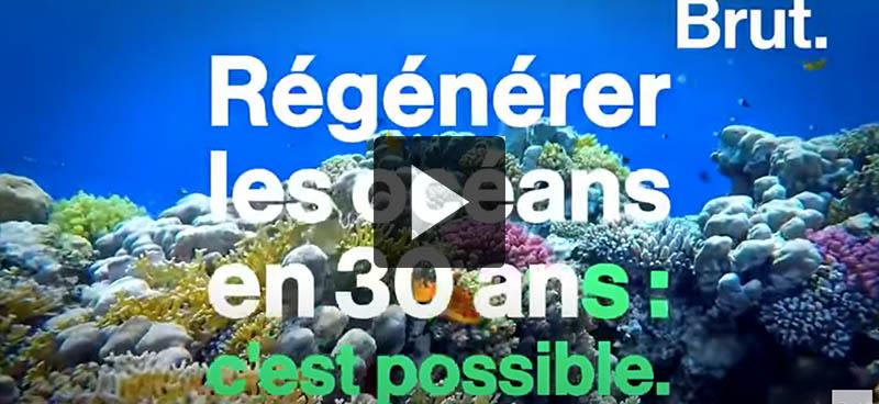Les actions pour régénérer les océans d'ici à 2050