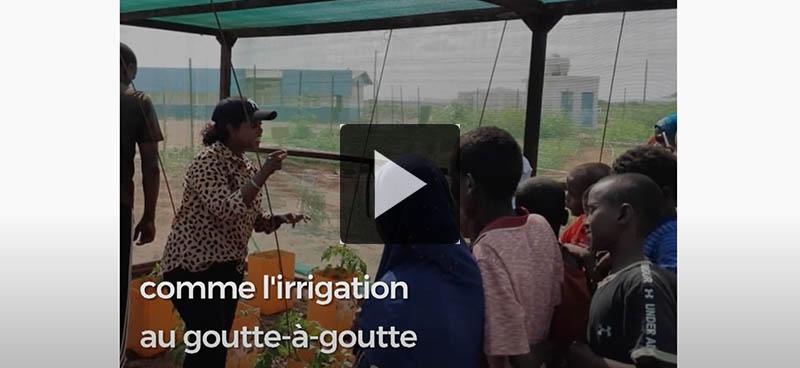 À Djibouti, des élèves s'initient au jardinage et aux techniques agricoles